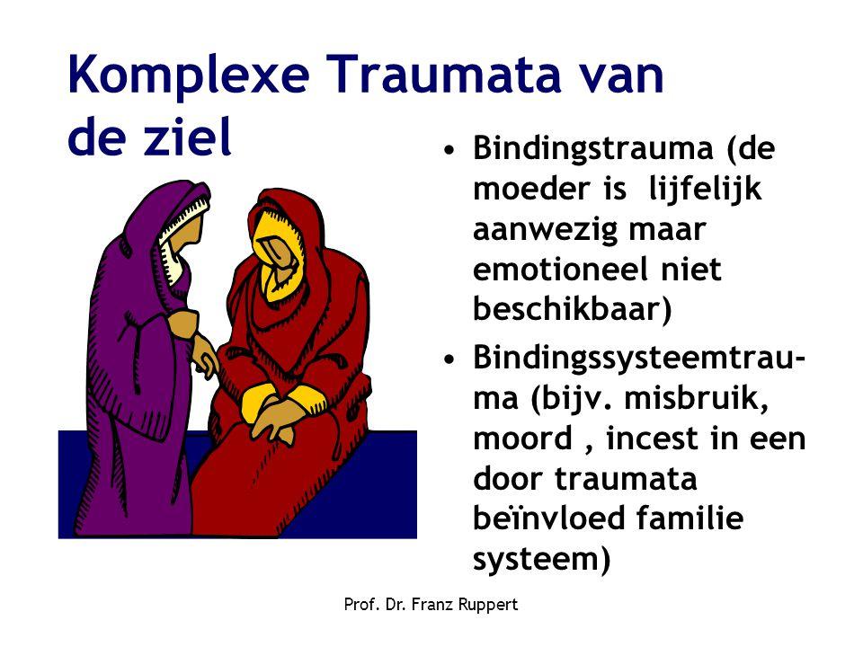 Komplexe Traumata van de ziel