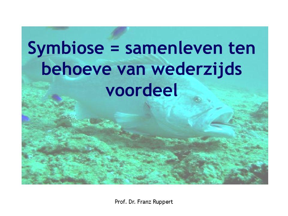 Symbiose = samenleven ten behoeve van wederzijds voordeel