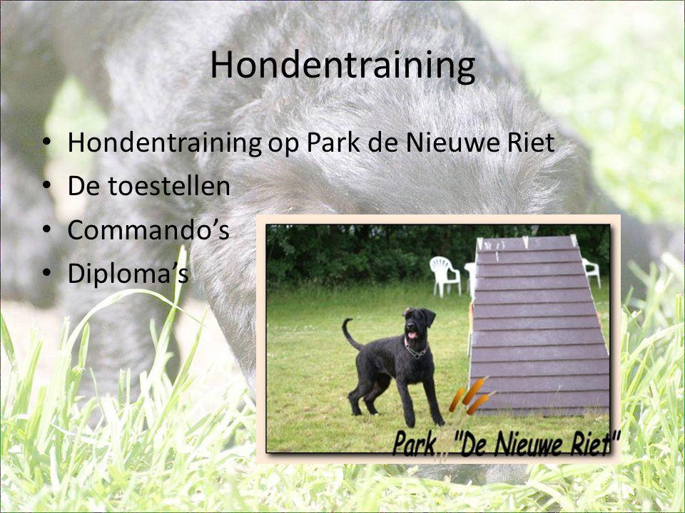 Hondentraining Hondentraining op Park de Nieuwe Riet De toestellen