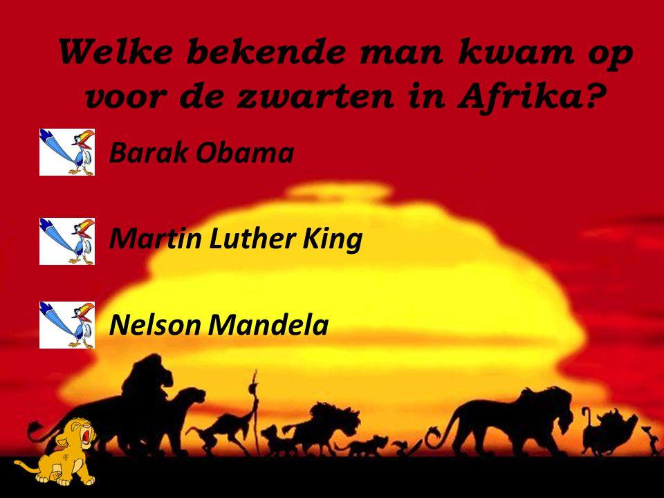 Welke bekende man kwam op voor de zwarten in Afrika