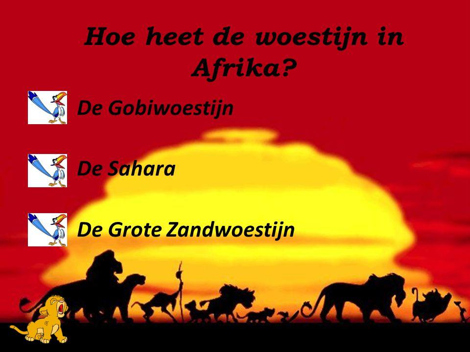 Hoe heet de woestijn in Afrika