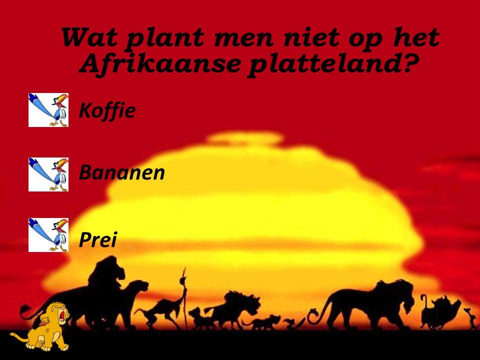 Wat plant men niet op het Afrikaanse platteland