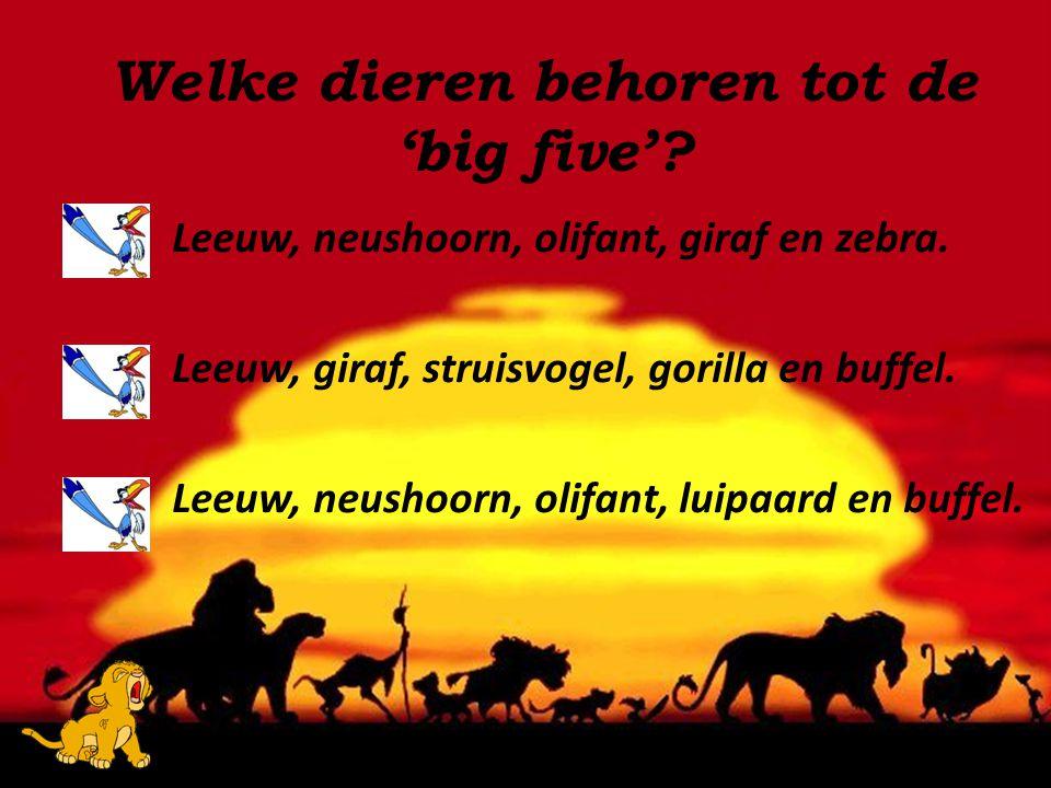 Welke dieren behoren tot de 'big five'