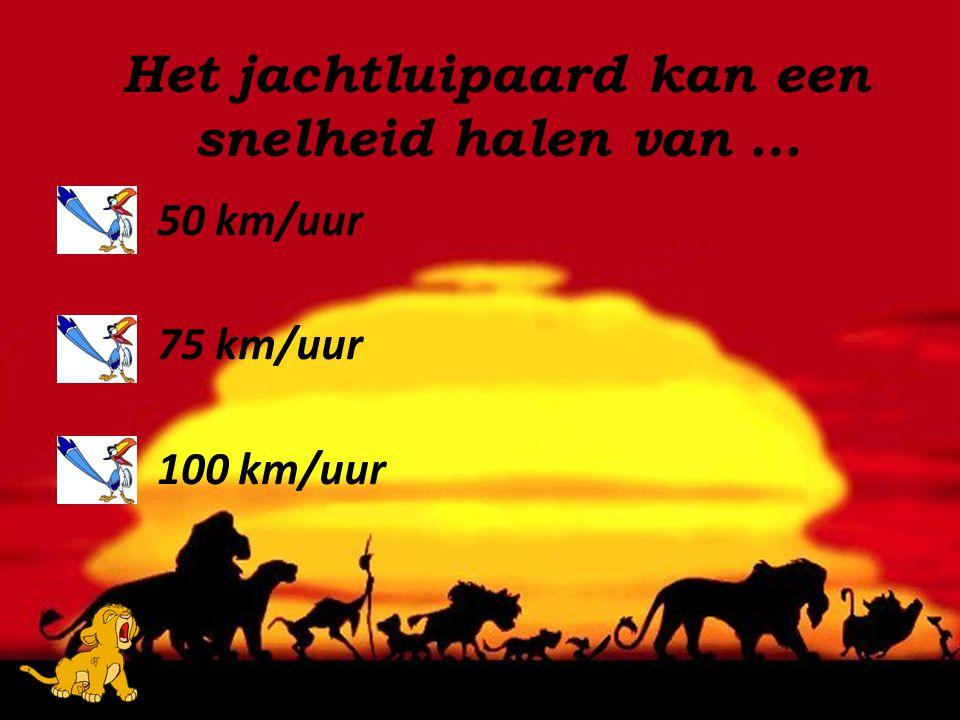 Het jachtluipaard kan een snelheid halen van …
