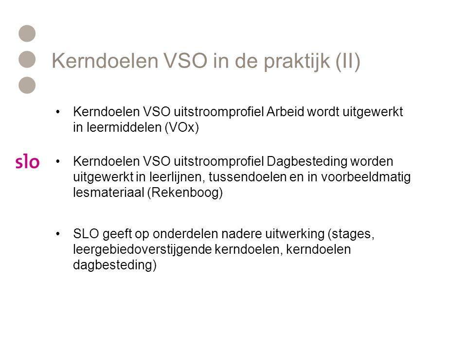 Kerndoelen VSO in de praktijk (II)