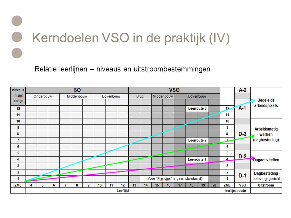Kerndoelen VSO in de praktijk (IV)