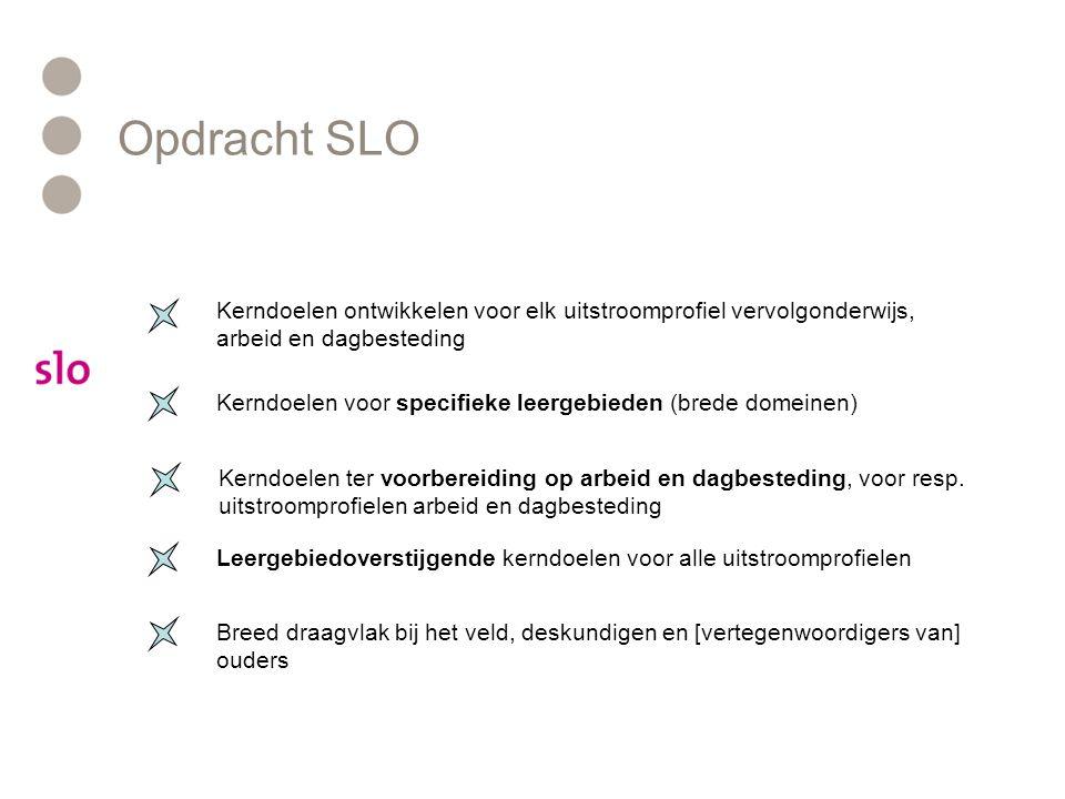 Opdracht SLO Kerndoelen ontwikkelen voor elk uitstroomprofiel vervolgonderwijs, arbeid en dagbesteding.