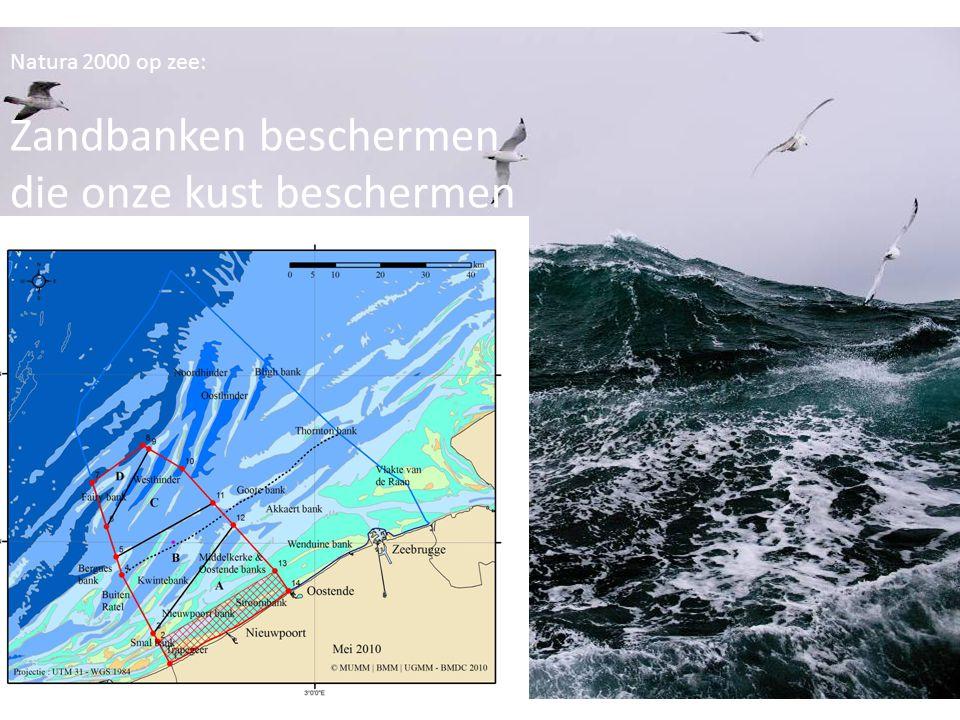 Zandbanken beschermen die onze kust beschermen