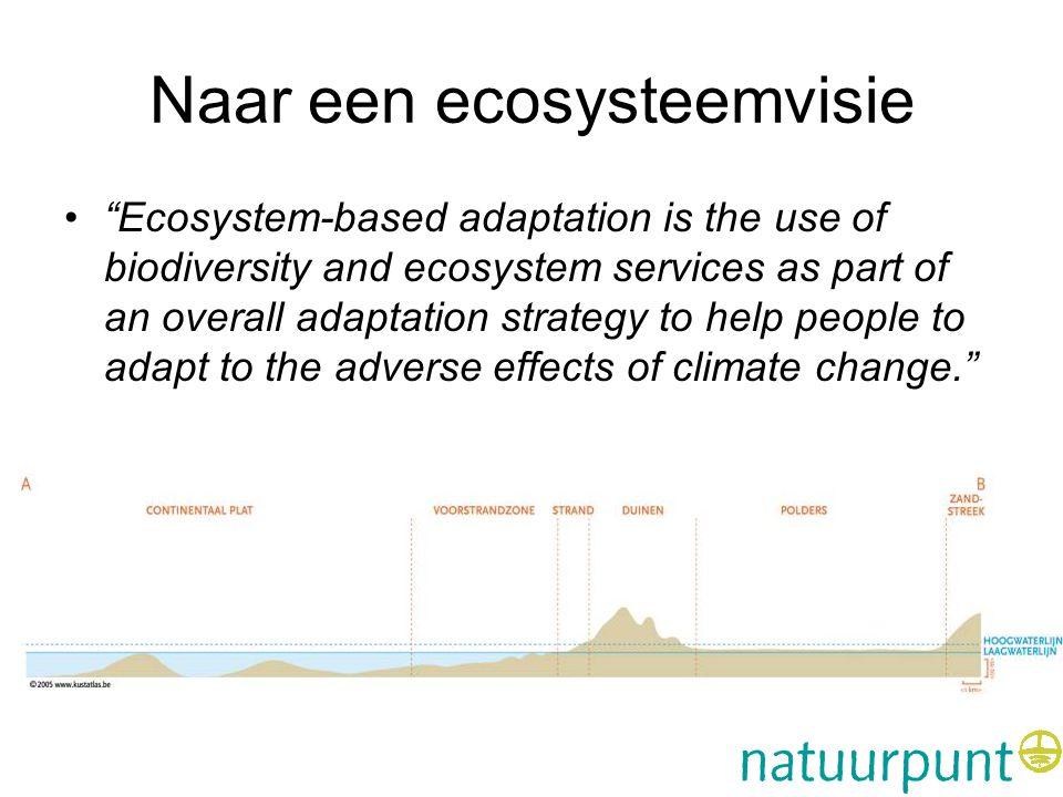 Naar een ecosysteemvisie