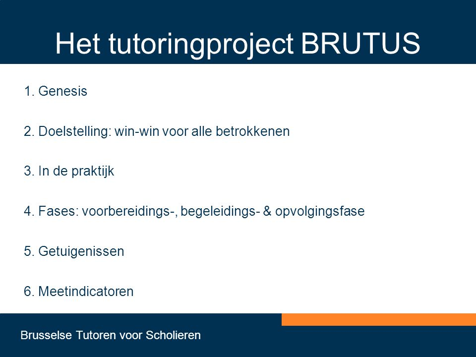 Het tutoringproject BRUTUS