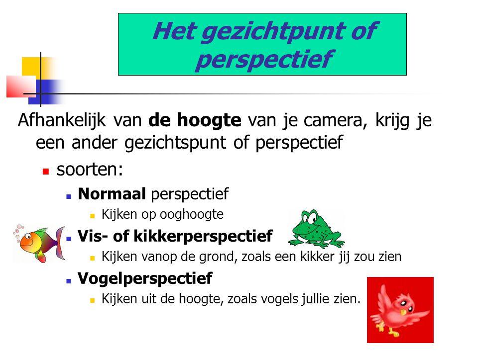 Het gezichtpunt of perspectief