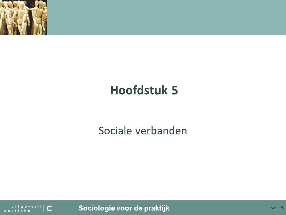 Hoofdstuk 5 Sociale verbanden