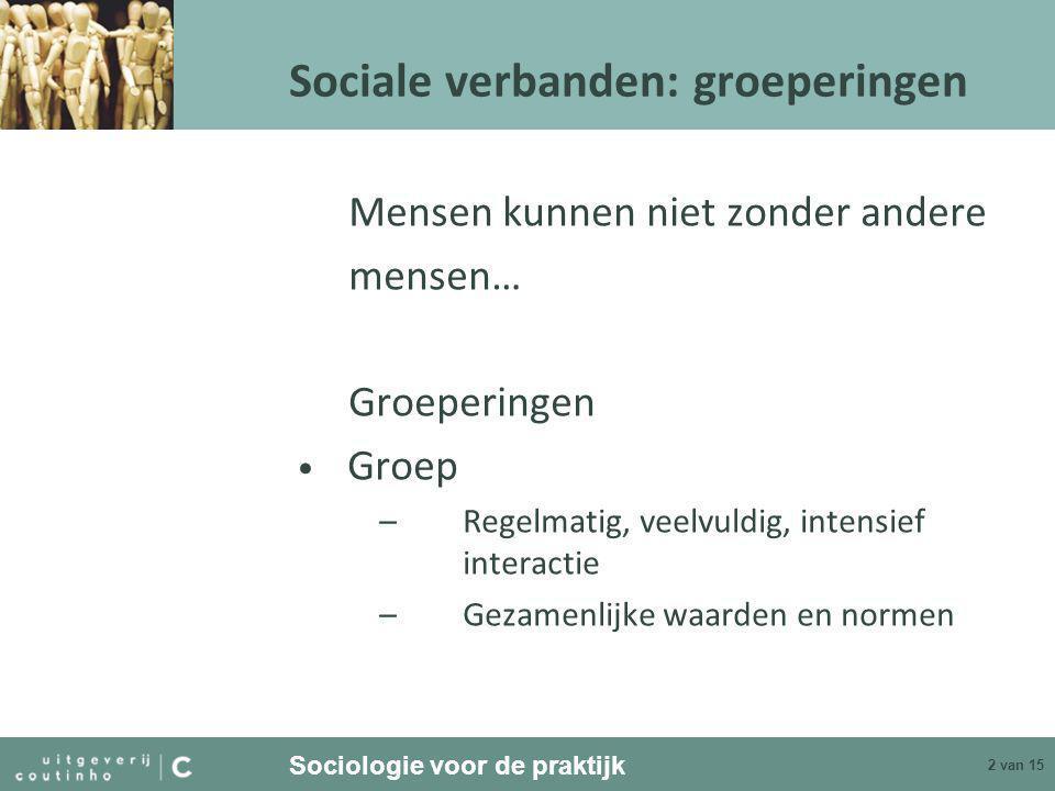 Sociale verbanden: groeperingen