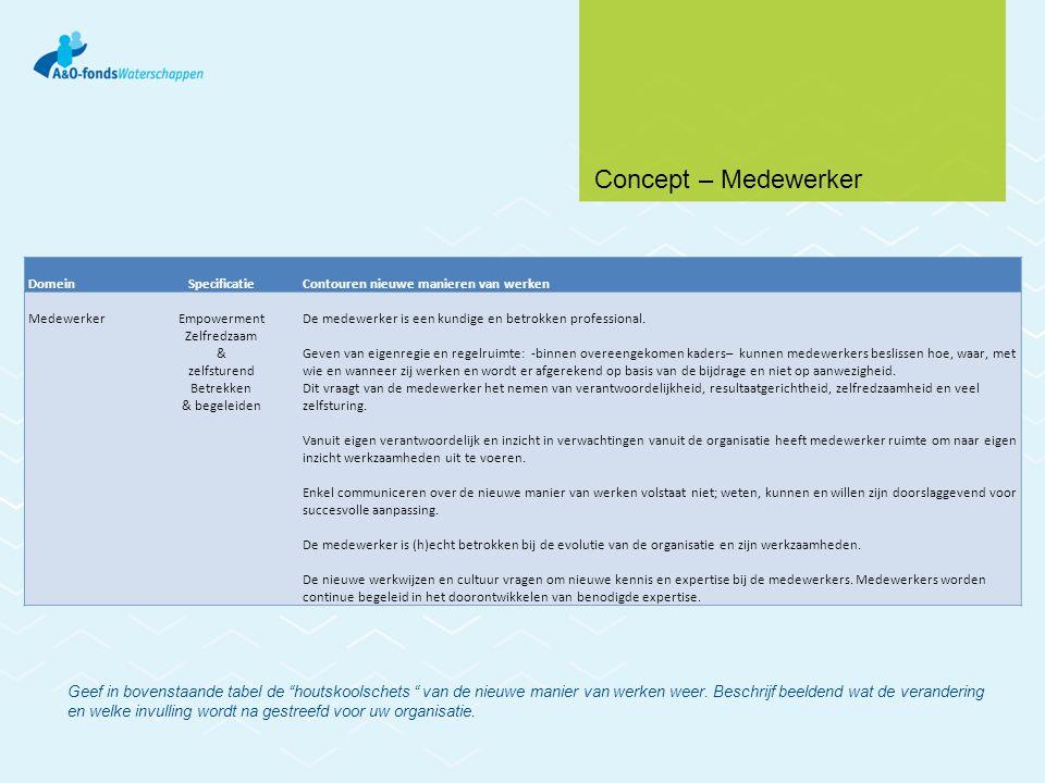 Concept – Medewerker Domein. Specificatie. Contouren nieuwe manieren van werken. Medewerker. Empowerment.