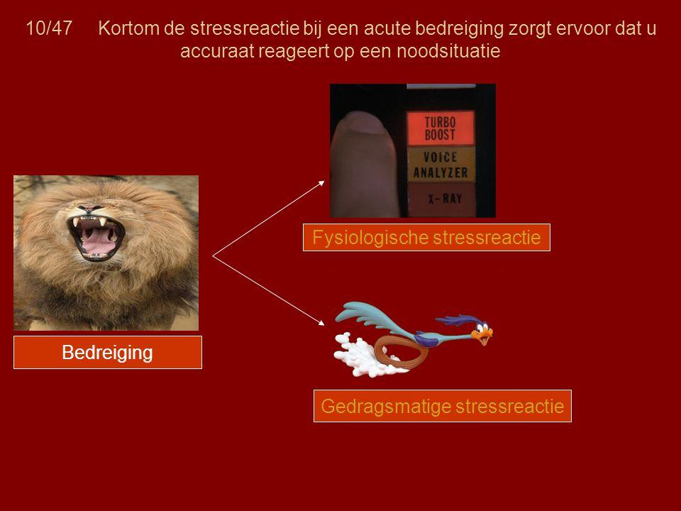 Fysiologische stressreactie