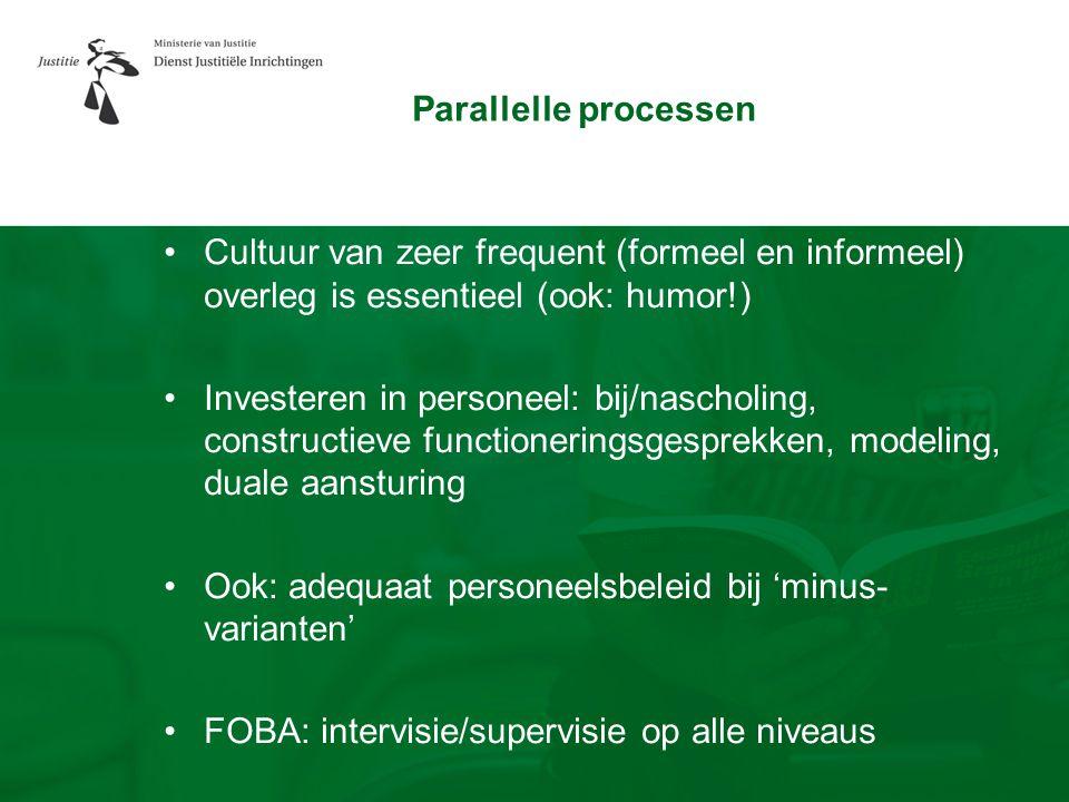 Parallelle processen Cultuur van zeer frequent (formeel en informeel) overleg is essentieel (ook: humor!)