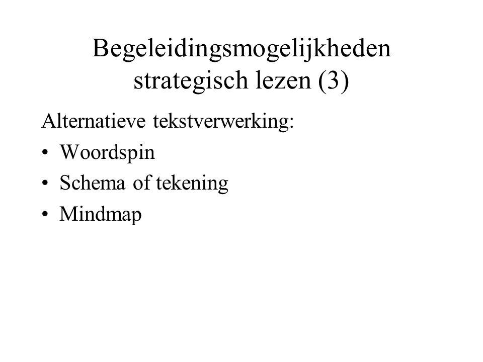Begeleidingsmogelijkheden strategisch lezen (3)
