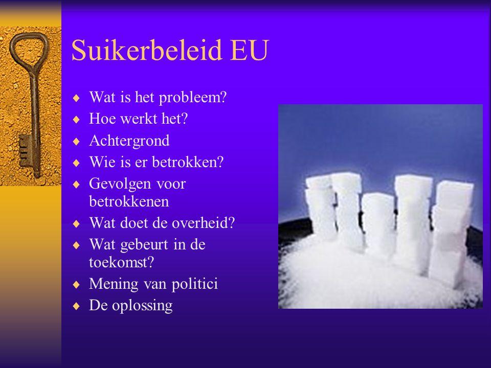 Suikerbeleid EU Wat is het probleem Hoe werkt het Achtergrond
