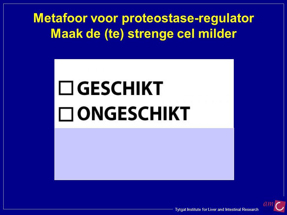 Metafoor voor proteostase-regulator Maak de (te) strenge cel milder