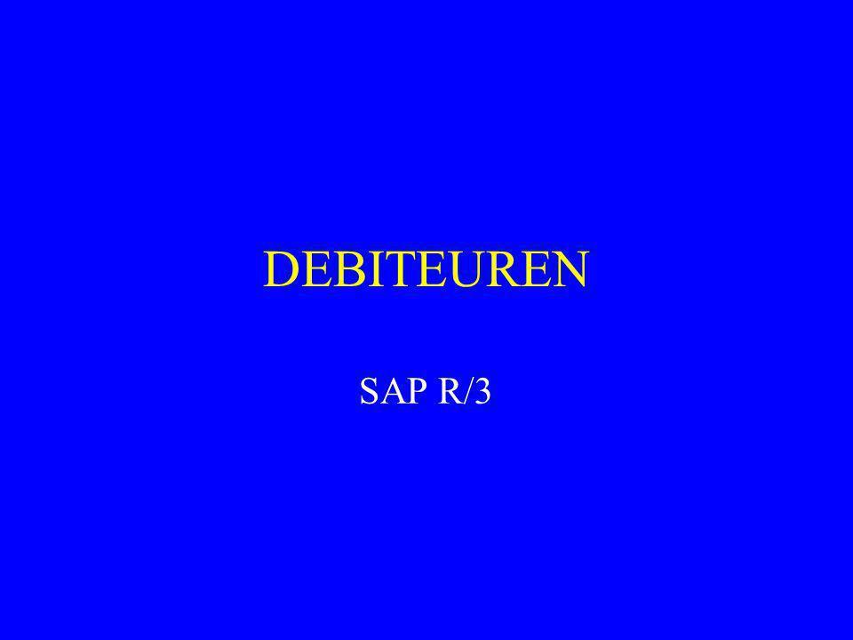 DEBITEUREN SAP R/3 1