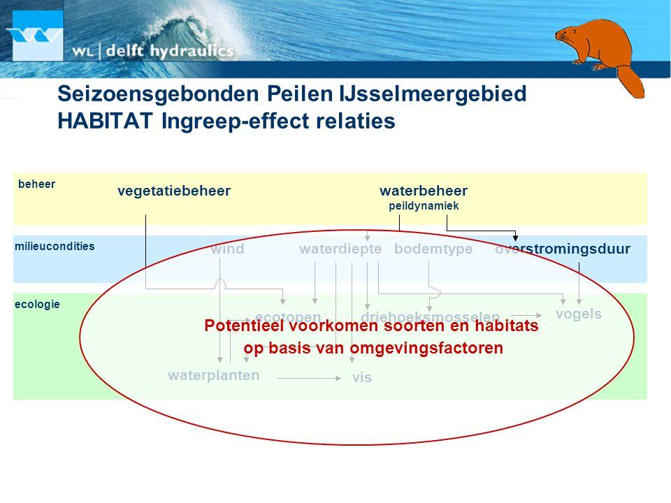 Seizoensgebonden Peilen IJsselmeergebied HABITAT Ingreep-effect relaties