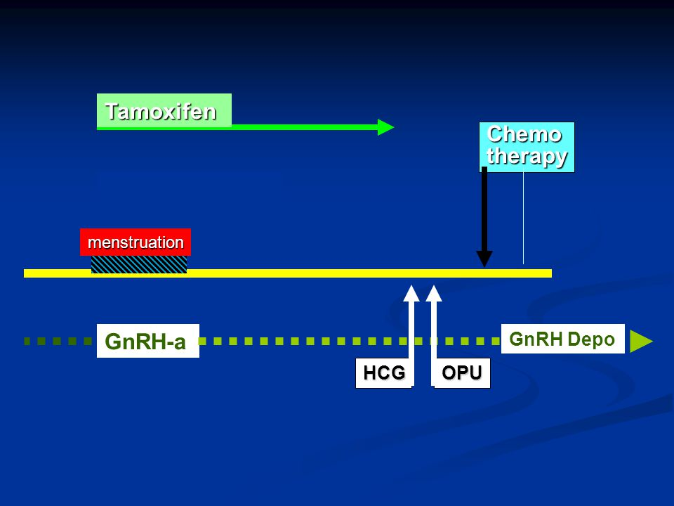 Tamoxifen Chemo therapy GnRH-a HCG OPU GnRH Depo menstruation