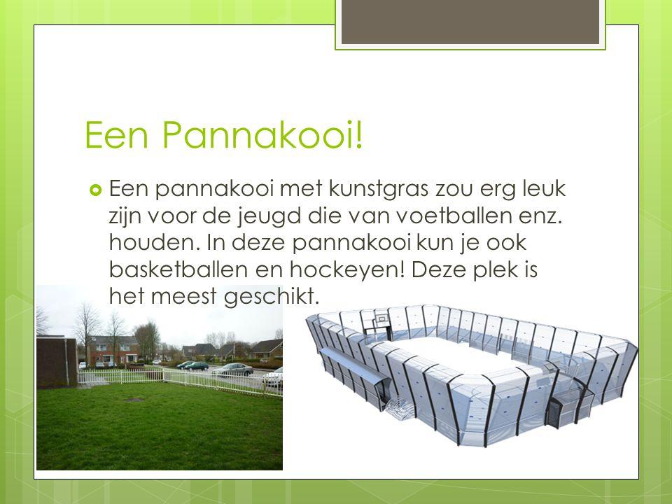 Een Pannakooi!