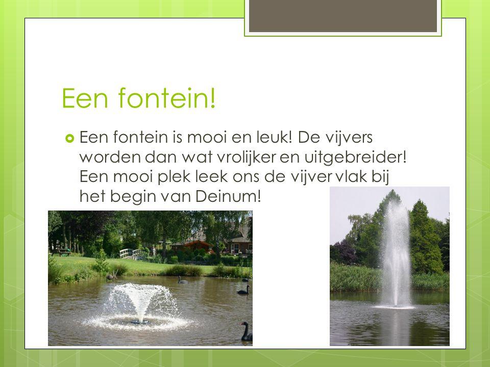 Een fontein!
