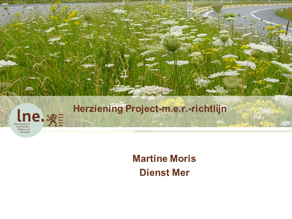 Herziening Project-m.e.r.-richtlijn
