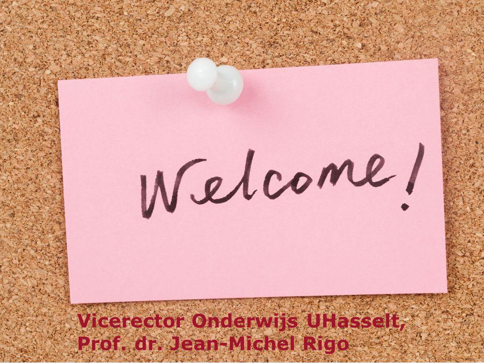 Vicerector Onderwijs UHasselt,