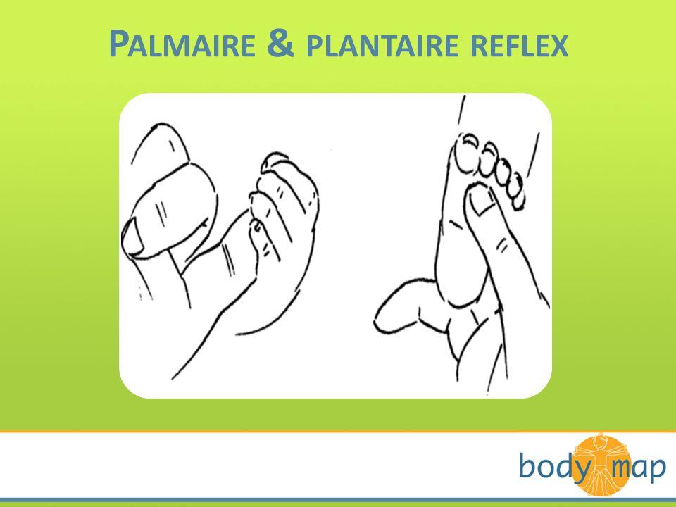 Palmaire & plantaire reflex