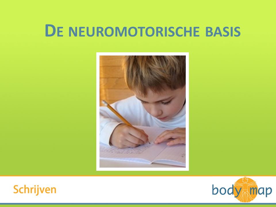 De neuromotorische basis