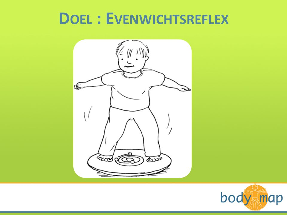 Doel : Evenwichtsreflex