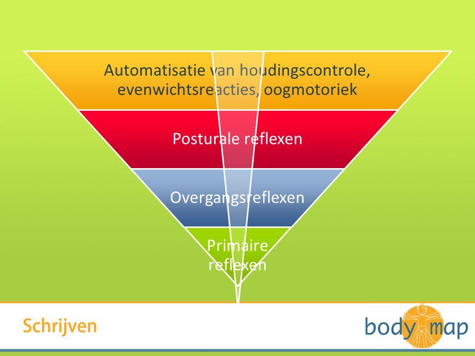 Automatisatie van houdingscontrole, evenwichtsreacties, oogmotoriek