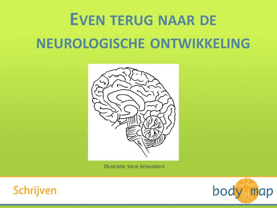 Even terug naar de neurologische ontwikkeling