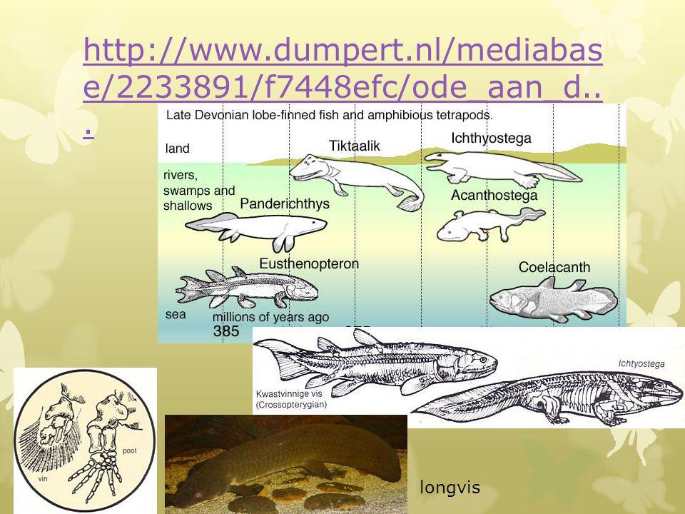 http://www.dumpert.nl/mediabase/2233891/f7448efc/ode_aan_d... longvis