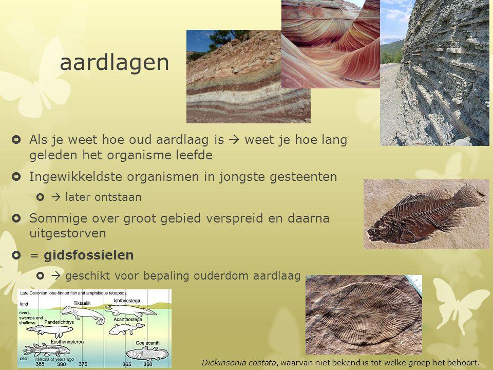 aardlagen Als je weet hoe oud aardlaag is  weet je hoe lang geleden het organisme leefde. Ingewikkeldste organismen in jongste gesteenten.