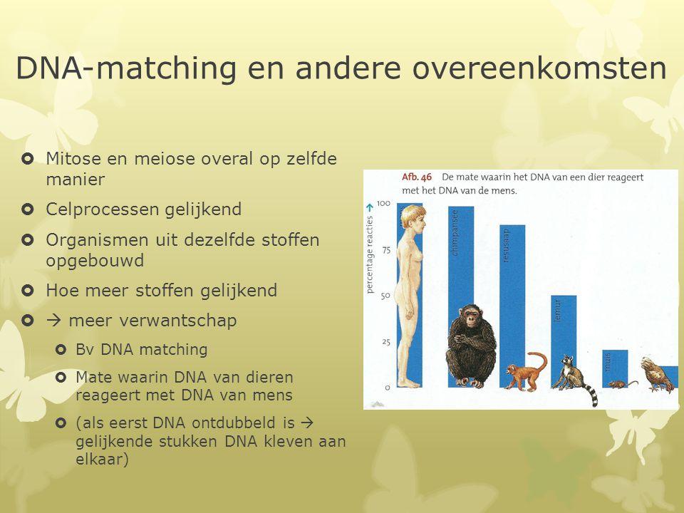 DNA-matching en andere overeenkomsten