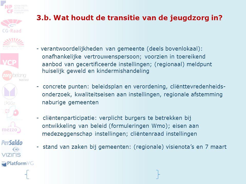 3.b. Wat houdt de transitie van de jeugdzorg in