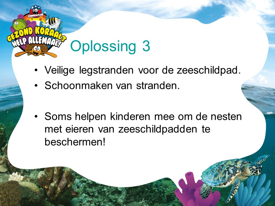Oplossing 3 Veilige legstranden voor de zeeschildpad.