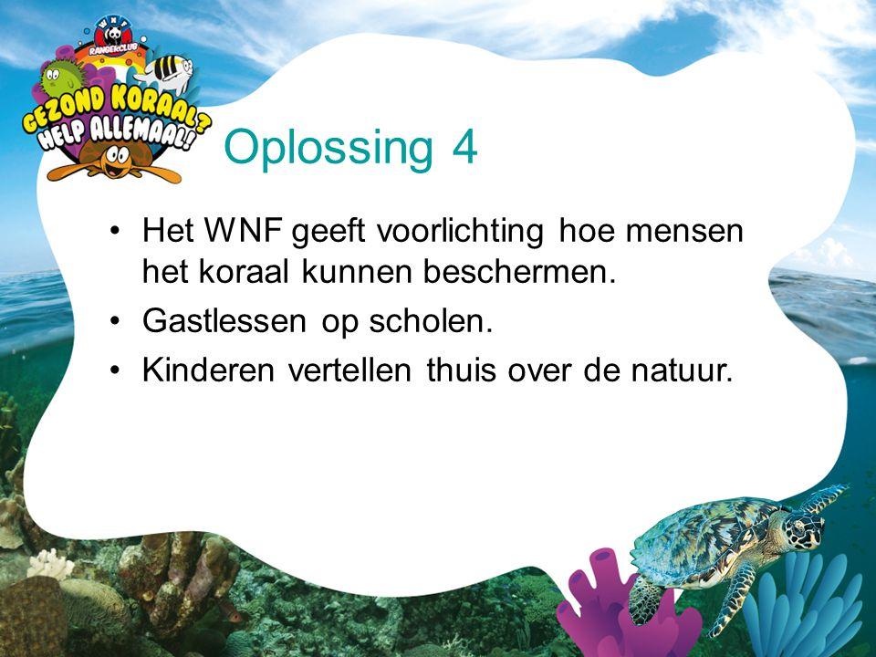 Oplossing 4 Het WNF geeft voorlichting hoe mensen het koraal kunnen beschermen. Gastlessen op scholen.