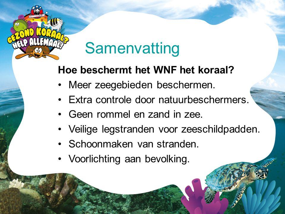 Samenvatting Hoe beschermt het WNF het koraal