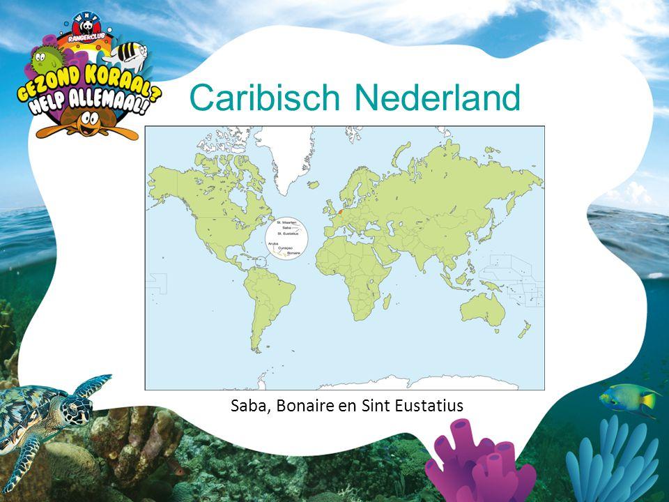 Caribisch Nederland Saba, Bonaire en Sint Eustatius