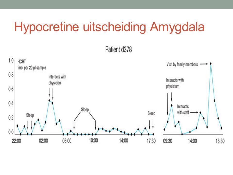 Hypocretine uitscheiding Amygdala