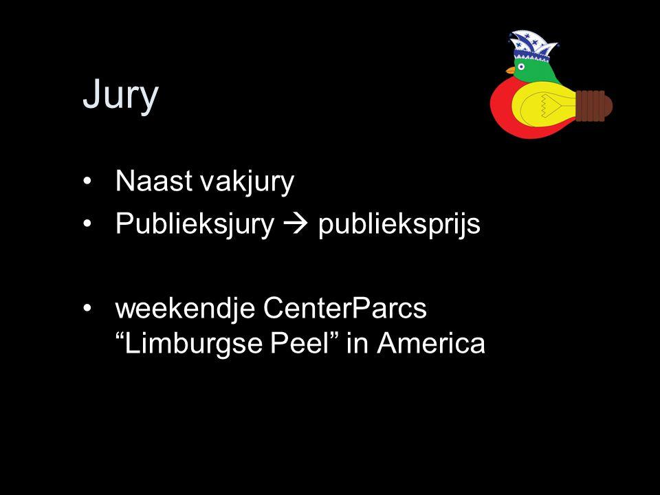 Jury Naast vakjury Publieksjury  publieksprijs