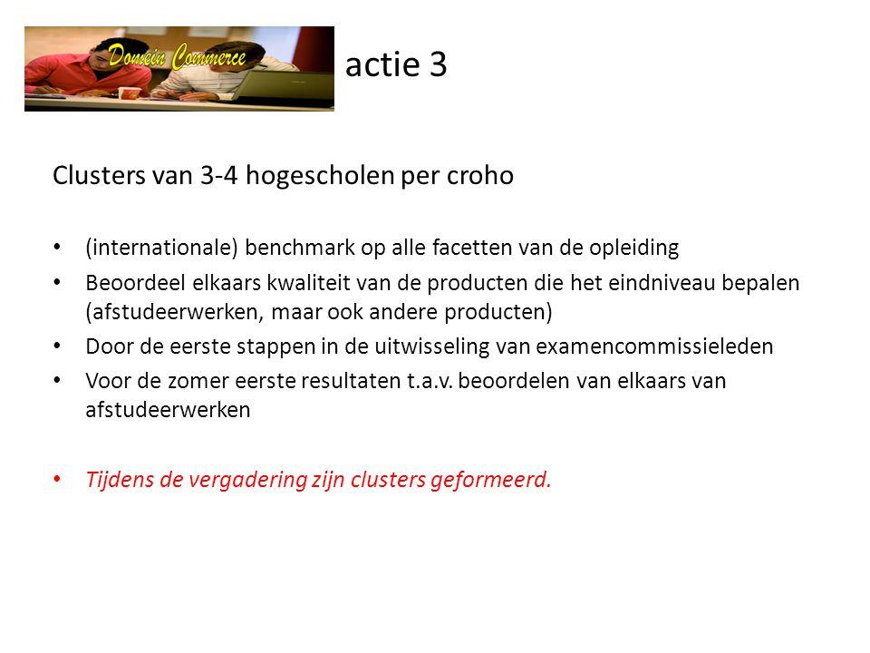 actie 3 Clusters van 3-4 hogescholen per croho
