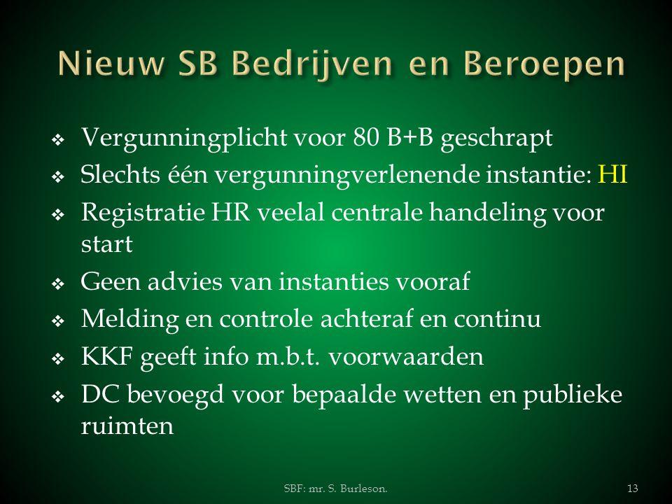 Nieuw SB Bedrijven en Beroepen