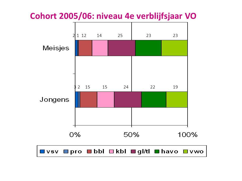 Cohort 2005/06: niveau 4e verblijfsjaar VO