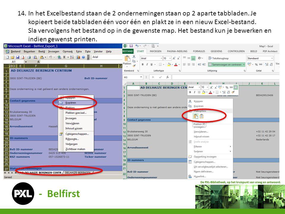 14. In het Excelbestand staan de 2 ondernemingen staan op 2 aparte tabbladen. Je kopieert beide tabbladen één voor één en plakt ze in een nieuw Excel-bestand.