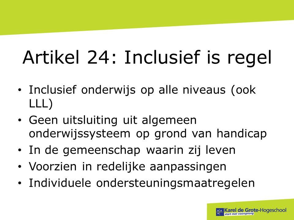 Artikel 24: Inclusief is regel